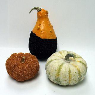 Oct-2010-Pumpkins--03