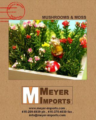 Mushrooms-Catalog-Cover
