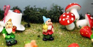 GnomesBerries28
