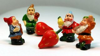 GnomesBerries10