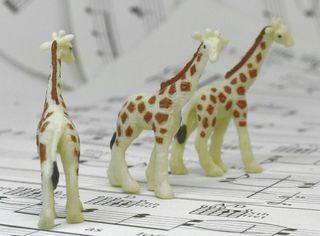 234-2622 Baby Giraffes-03